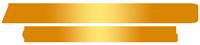 AMN-Micro-Logo